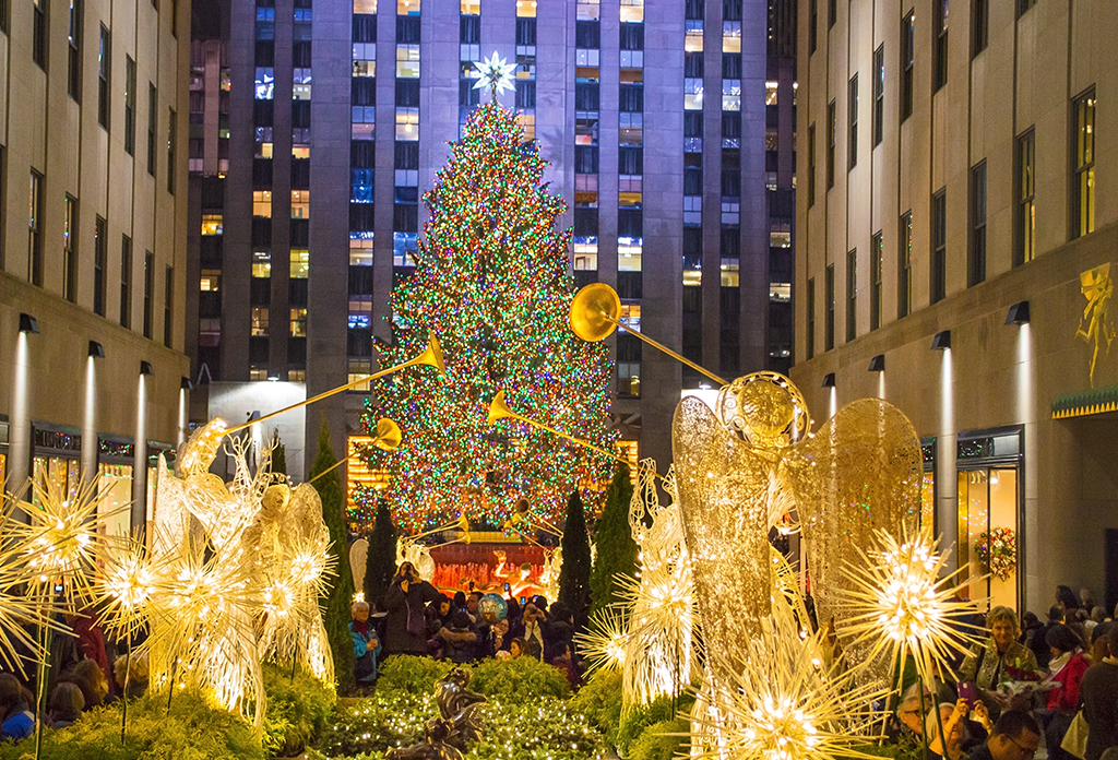 The Tree At Rock Center