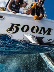 Boom Boom Sports Fishing, Hawaii