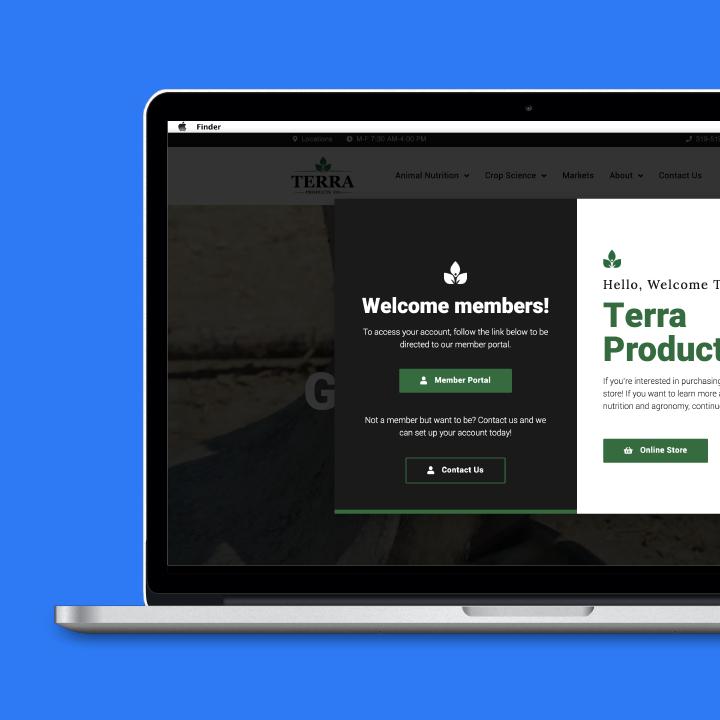 Web & App Design 7