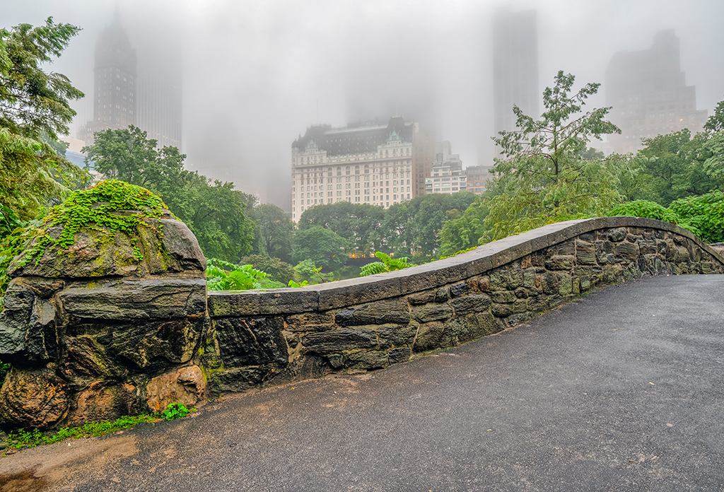 Fog Over Gapstow Bridge Central Park