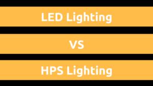 LEDs vs HPS Lighting