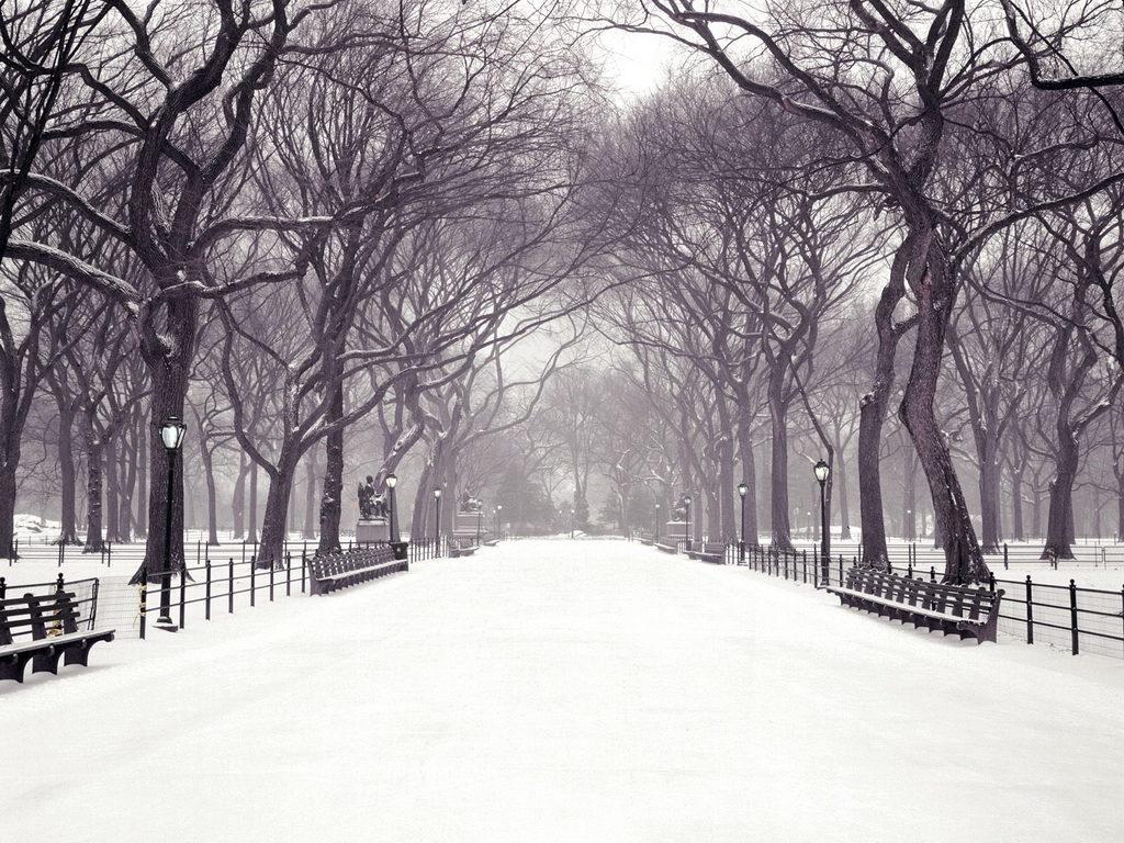Winteratthemall