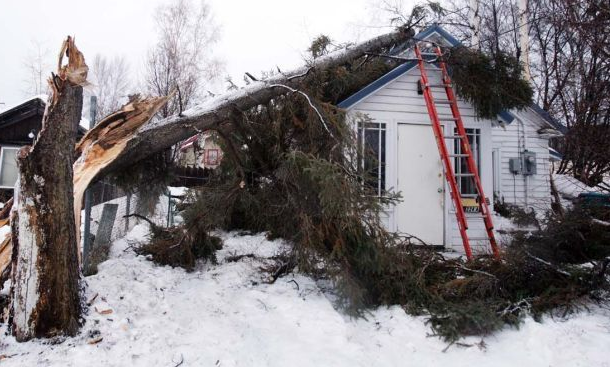 Image result for Winter Storm Damage Restoration