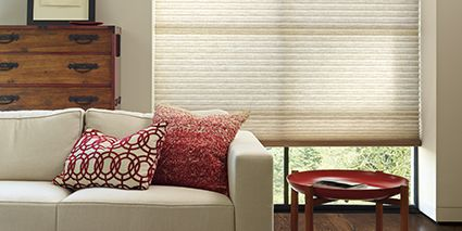 Duette ® Honeycomb Shades 1