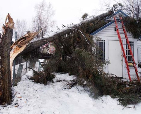 Winter Storm Damage Cleanup And Restoration