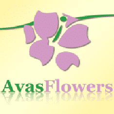 Avasflowers.Net Logo