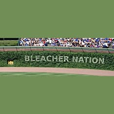 Bleachernation.Com Logo
