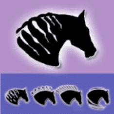 Dreamhorse.Com Logo