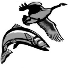 Fieldandstream.Com Logo