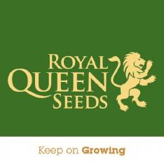 Royalqueenseeds.Com Logo
